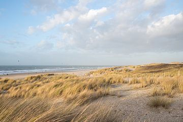 Atmen Sie frische Luft am Strand von Kijkduin! von Daniel Van der Brug