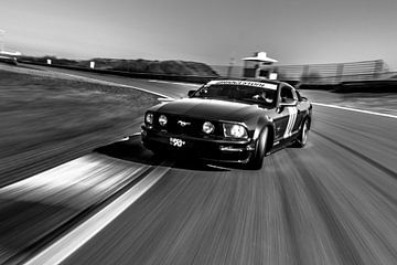 Mustang van Michel de Koning