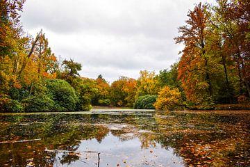 Herbstfarben Beekhuizen von Sharon Hendriks