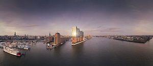 Panorama van de skyline van Hamburg met weerspiegeling