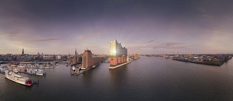 Panorama van de skyline van Hamburg met weerspiegeling van Jonas Weinitschke
