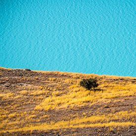 Nieuw-Zeeland - Tekapo - De abstracte oever van Lake Tekapo van Rik Pijnenburg
