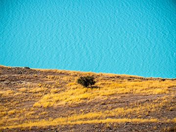 Nieuw-Zeeland - Tekapo - De abstracte oever van Lake Tekapo