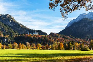 Schloss Neuschwanstein von Frank Herrmann
