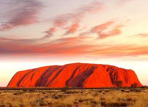 Uluru Ayers Rock in vuur en vlam van