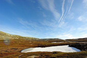 Schneerest im Nipfjället Naturreservat van Lars Tuchel