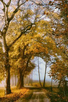 The Road to You von Lars van de Goor