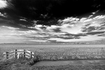 Weids uitzicht over akkers en weilanden nabij IJsselstein. van Tony Buijse