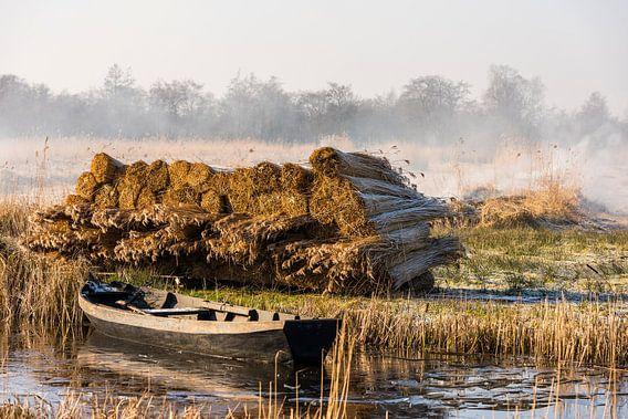 Rietteelt in Giethoorn van Daan Kloeg
