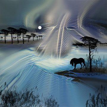 Paard van Raina Versluis