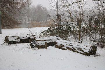 3 Baumstämme im Schnee von Rosalie Broerze