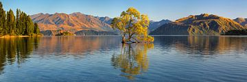 Lake Wanaka bei Sonnenaufgang, Neuseeland von Markus Lange