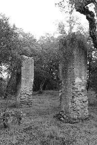 De Galg van Saint-Tropez van Tom Vandenhende