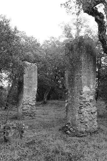 De Galg van Saint-Tropez