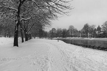 Park van Meezenbroek te Heerlen in de winter BW van Francois Debets