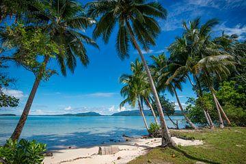 Tropisch strand op de Salomon eilanden van