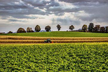 göttliche Landschaft mit Traktor von Greet Thijs