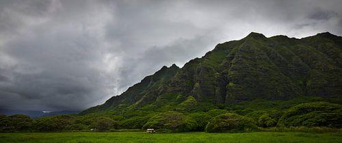 Hawaii - Berg in de jungle op met dreigende lucht van