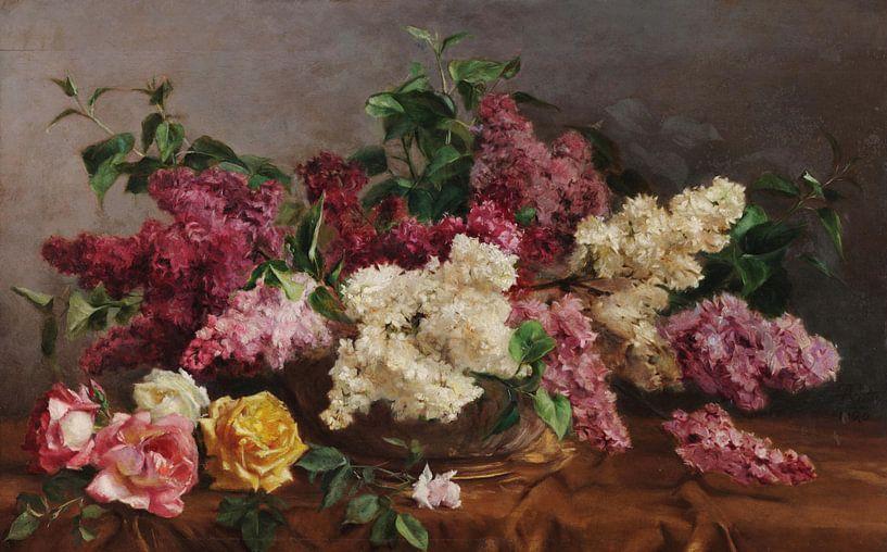 António José da Costa~Roze paars van finemasterpiece