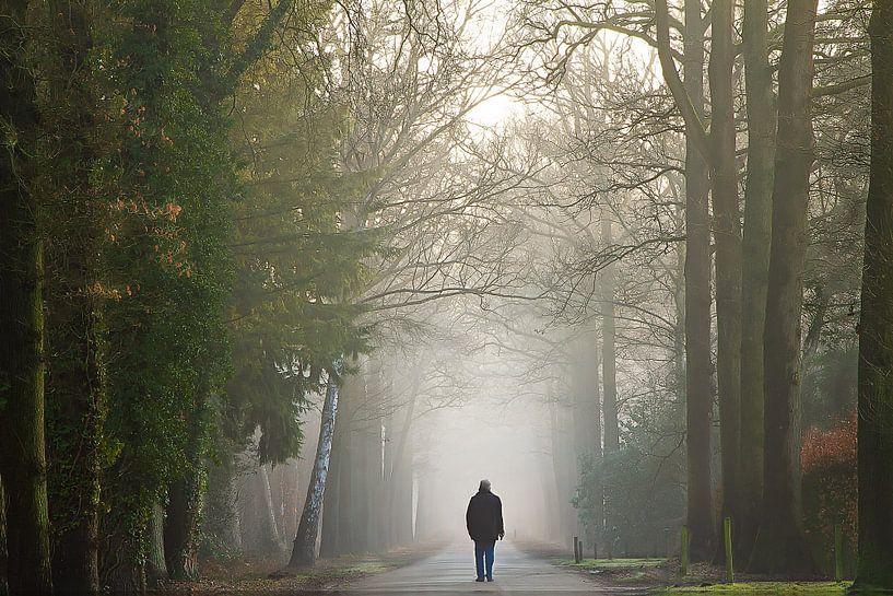 Wandelen naar het licht van Jos Erkamp
