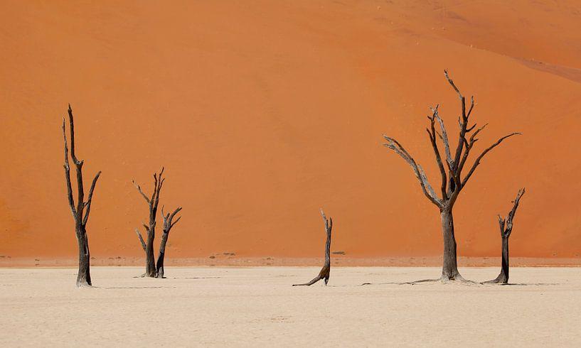 Woestijn Namibië van Jeffrey Groeneweg