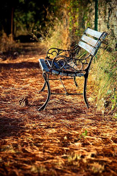 Blauw bankje in de ochtendzon in de Provence, Frankrijk. van Eyesmile Photography