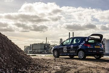 Peugeot 206 WRC-look van Sim Van Gyseghem