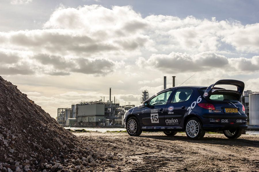 Peugeot 206 WRC-look