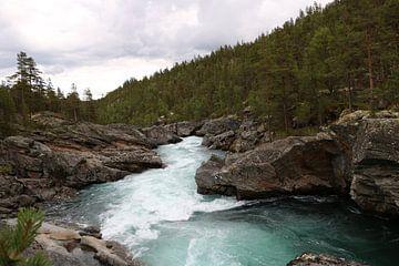 Wilde rivier van Myrthe Ruijgrok