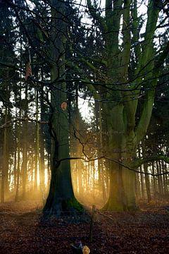 De verstopte zonsopkomst. van Jurjen Jan Snikkenburg