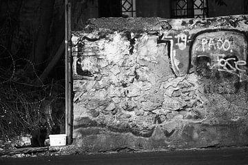 Modern Athene 5 van Bart Rondeel