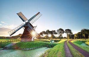 morning sunshine behind Dutch windmill