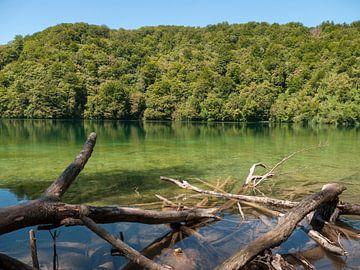 Meer in Nationaal Park Plitvice in het bos von Sjoerd Rienks