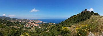 Collioure Panorama - historisches Dorf und Fort St. Elme in Südfrankreich von Frank Herrmann