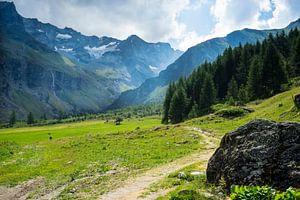 Zomerse bergwandeling in de Franse Alpen