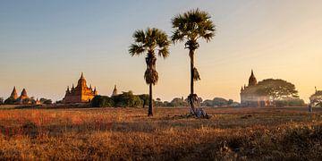 Ochtend in Bagan van Antwan Janssen