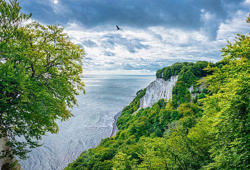 Krijtrotsen aan de kust van Rugen, Duitsland