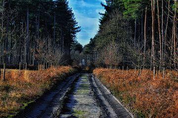 Klosterwaldweg von Paul Vermeeren