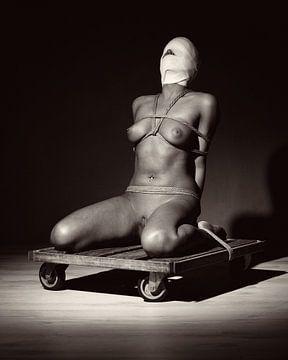 Sehr schöne nackte Frau, die mit einem Seil gefesselt ist. #2587 von william langeveld