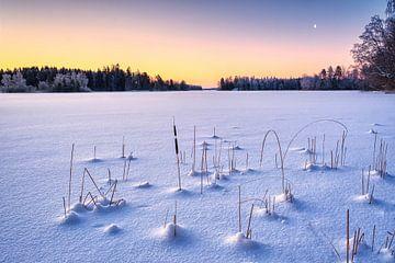 Een bevroren meer in Zweden tijdens zonsopkomst van Tim Vrijlandt