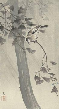 Schwanzmeise im Sturm von Ohara Koson