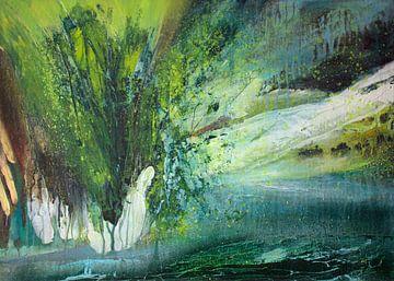 Rette den Regenwald von Sylvia Evans