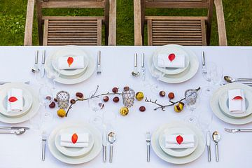 Festlich gedeckter Tisch im Garten von Werner Dieterich