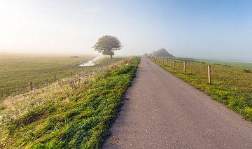 Landweg in de vroege ochtend von Ruud Morijn