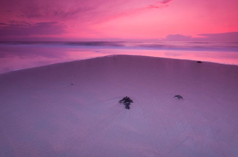 Purple evening at the beach - 2 van Damien Franscoise