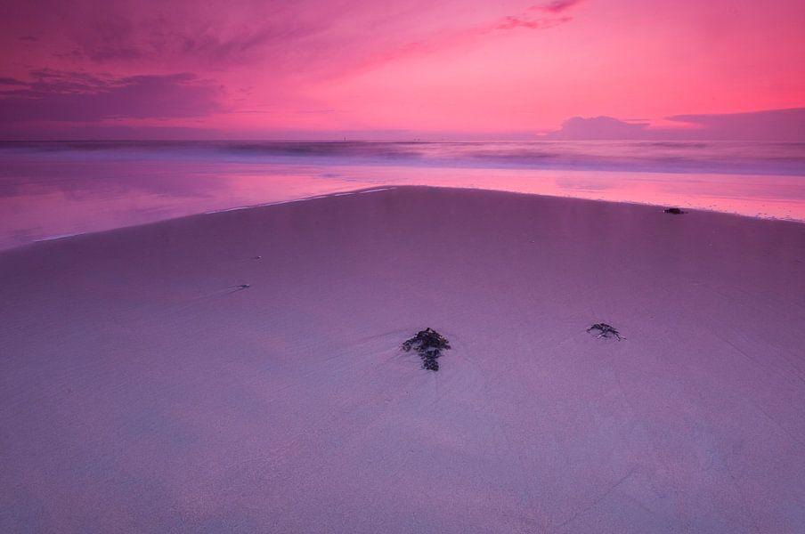 Purple evening at the beach - 2