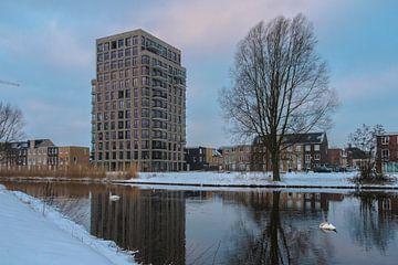Piushaven gebied in de Winter gezien vanuit Natuurgebied Moerenburg