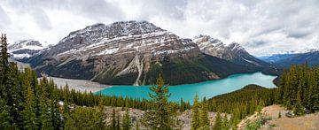Peyto Lake vom Bow Summit aus gesehen, Banff National Park, Rocky Mountains, Kanada, Nordamerika von Mieneke Andeweg-van Rijn