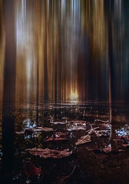 licht aan het eind van het bospad