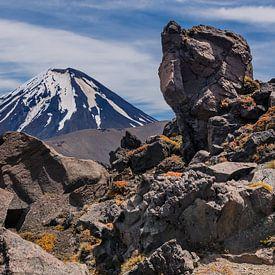 Le volcan du Mont Doom en Nouvelle-Zélande sur Bep van Pelt- Verkuil